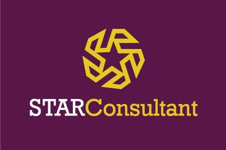 Star Consultant - Logo Design