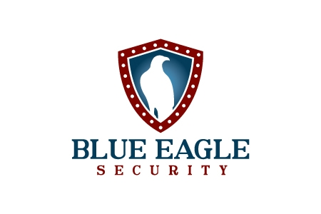 Blue Eagle Logo Design