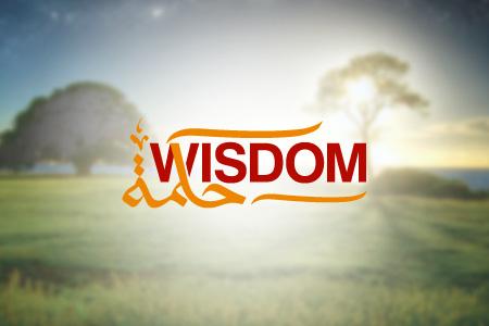 Wisdom Logo Design